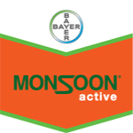 Monsoon Active OD 1L